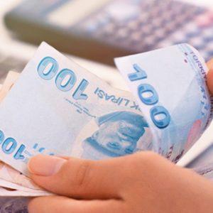 Türkische Lira zählen