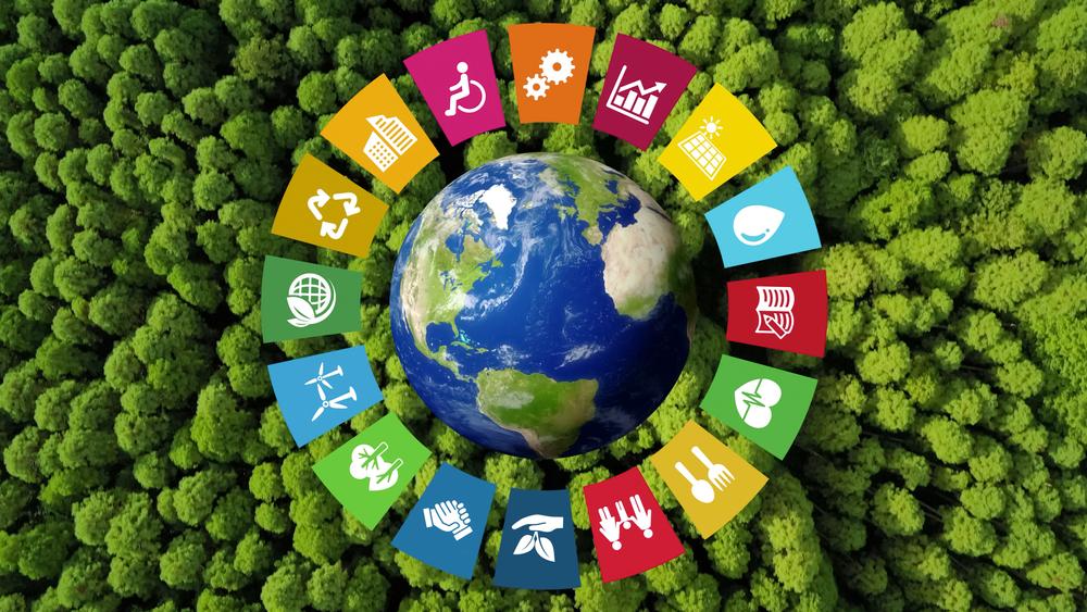 Nachhaltigkeitsziele vor Bäumen