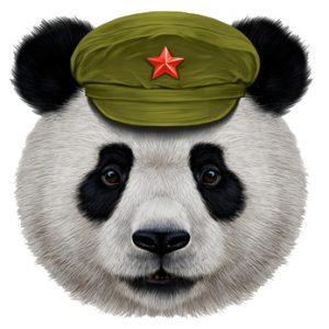 Panda mit Militärkappe